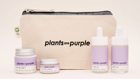 20% Rabatt bei Plants are Purple